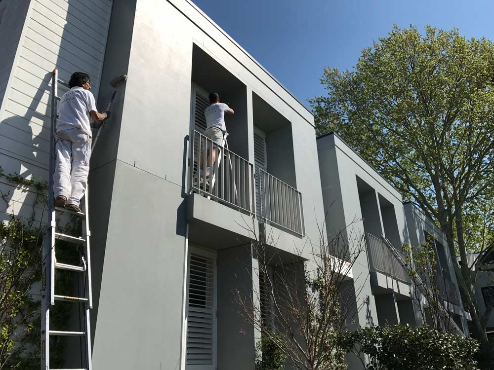 North Sydney<br>House Painting